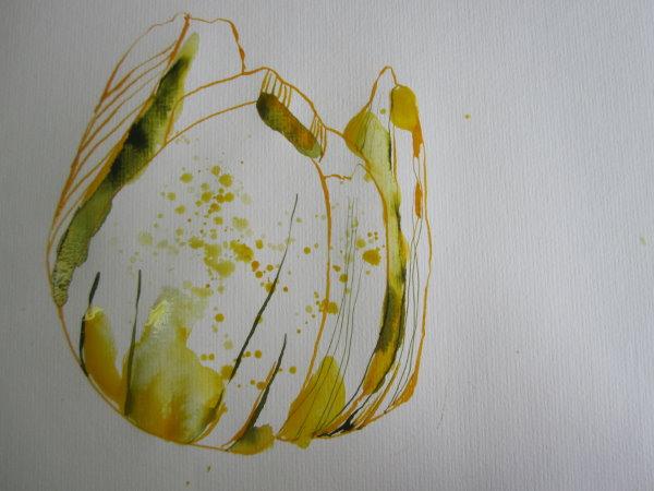 Am meisten fasziniert mich das Gelb der Winterlinge - Susanne Haun