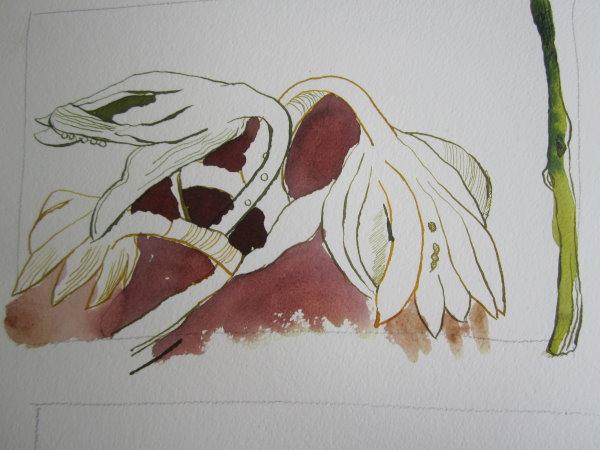 Tusche von der Farbe Carput Mortem ergibt einen guten Erdboden - Susanne Haun