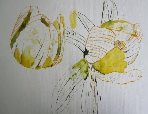 Die Blätter festigen die schwebenden Blüten - Susanne Haun