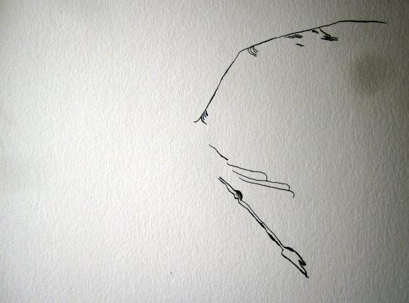 Ich beginne mit dem ausgebreiteten Flügel - Susanne Haun