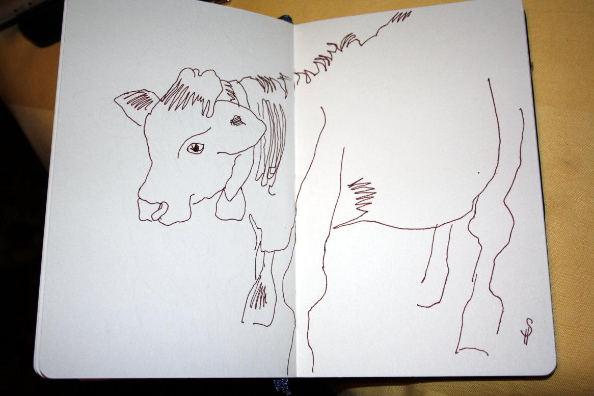 Skizze Kühe auf der Weide Seite 3 von Susanne Haun