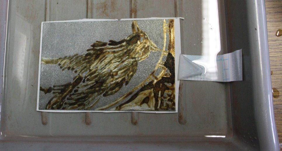 Die abgedeckte Platte mit einer Ätzstufe liegt in der Säure (c) Foto von Susanne Haun