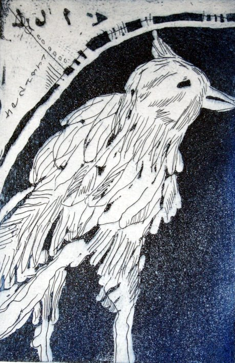 Amsel (c) Aquatinta Radierung auf Hahnemühle Kupferdruckpapier von Susanne Haun