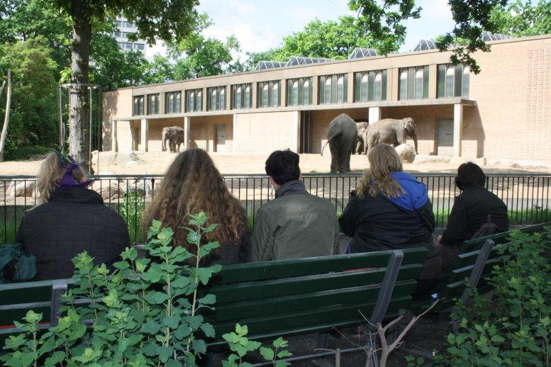 Fünf Malschülerinnen begleiteten mich in den Zoo (c) Foto von Susanne Haun