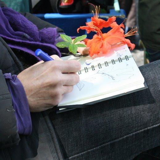 Cordula erholt sich bei einer Blume (c) Foto von Susanne Haun
