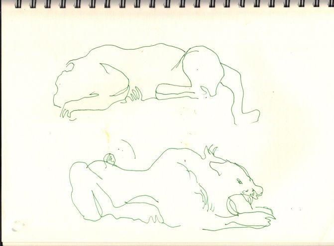 Löwen (c) Skizze von Susanne Haun