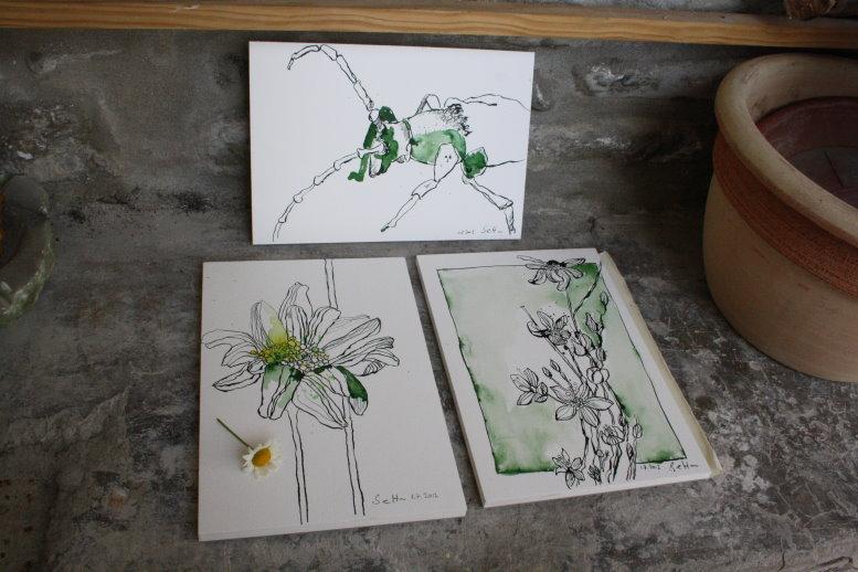 Entstehung Gänseblümchen mit lotusgrüner Tusche (c) Foto von Susanne Haun
