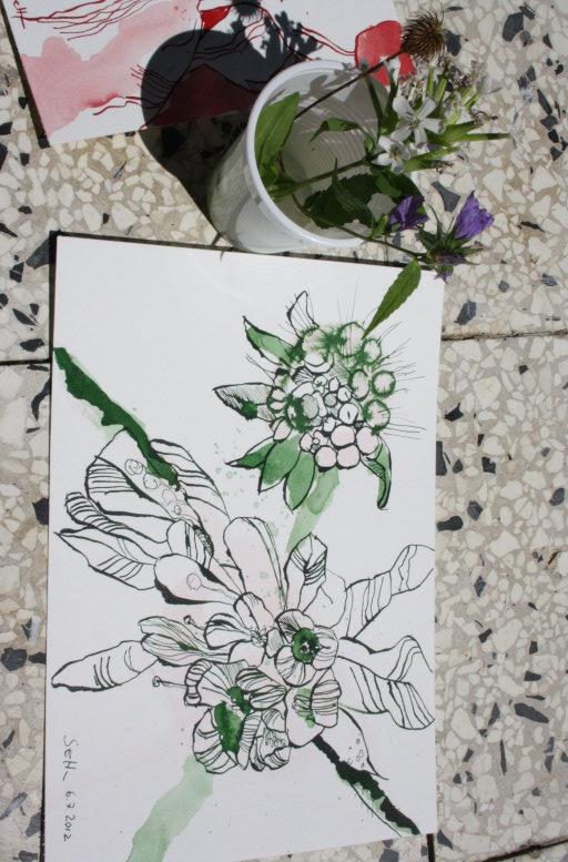 Grüne Blumen 17 x 22 cm Tusche auf Burgund Hahnemühle (c) Zeichnung von Susanne Haun
