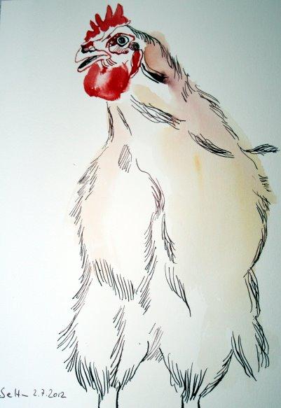 Hahn 17 x 22 cm Tusche auf Bütten (c) Zeichnung von Susanne Haun