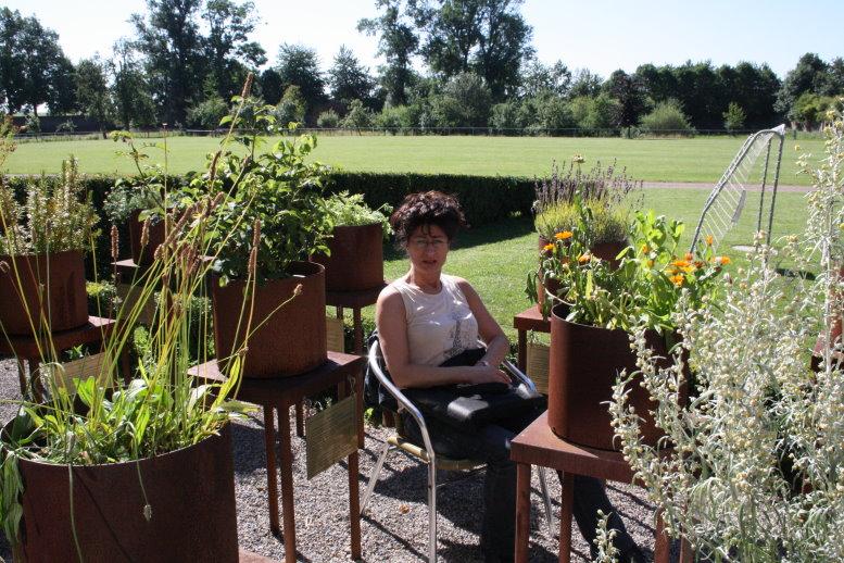 Viola macht die Sonne nichts aus (c) Foto von Susanne Haun