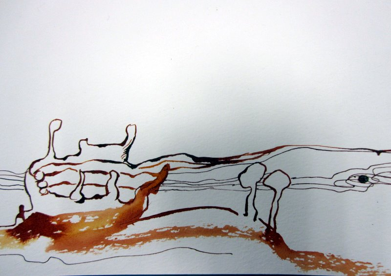 Detail 2 Samenfrüchten rieselt Wasser (c) Zeichnung von Susanne Haun