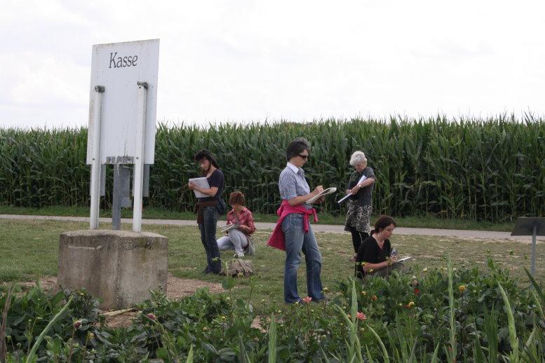 Ich finde auch das Maisfeld im Hintergrund reizvoll (c) Foto von Susanne Haun