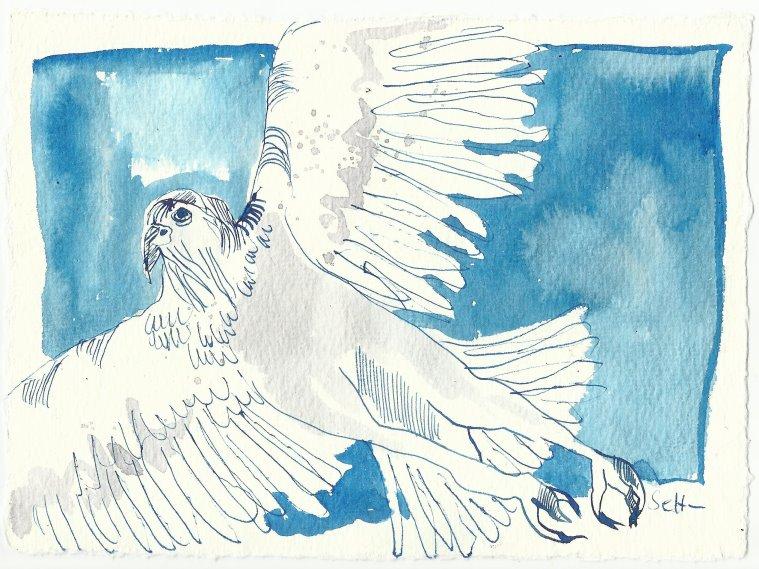 Blatt 12 Adler über meinem Kopf im blauen Himmel kreisten (c) Zeichnung von Susanne Haun