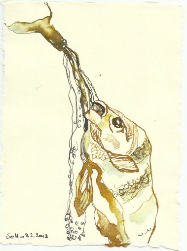 Blatt 80 Weine fliessen Fische zucken (c) Zeichnung von Susanne Haun