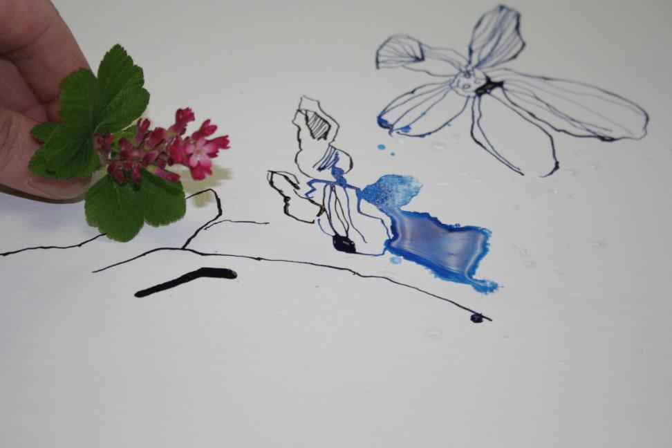 Zeichnung und Motiv (c) Foto von Susanne Haun