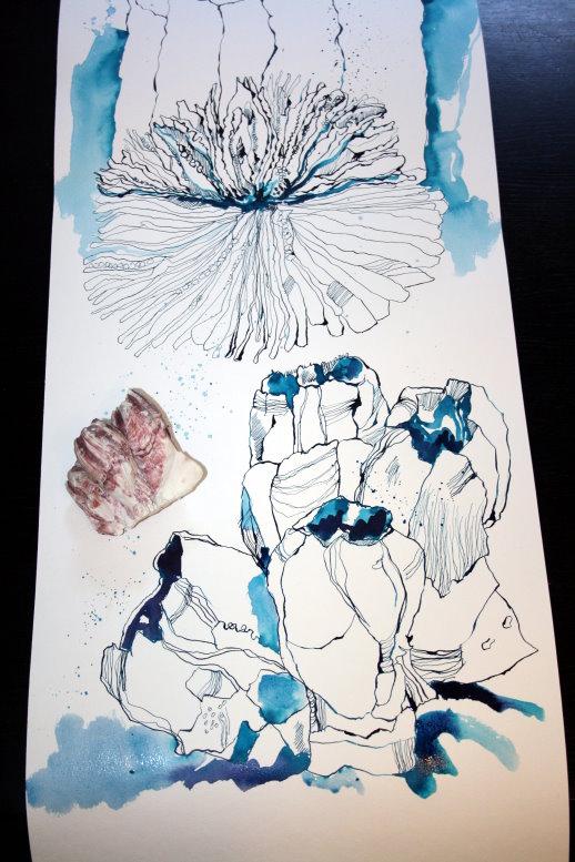 Ausschnitt Rolle Nr. 3 - erste und zweite Koralle (c) Zeichnung von Susanne Haun