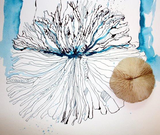 Zeichnung einer versteinerten Koralle (c) Susanne Haun