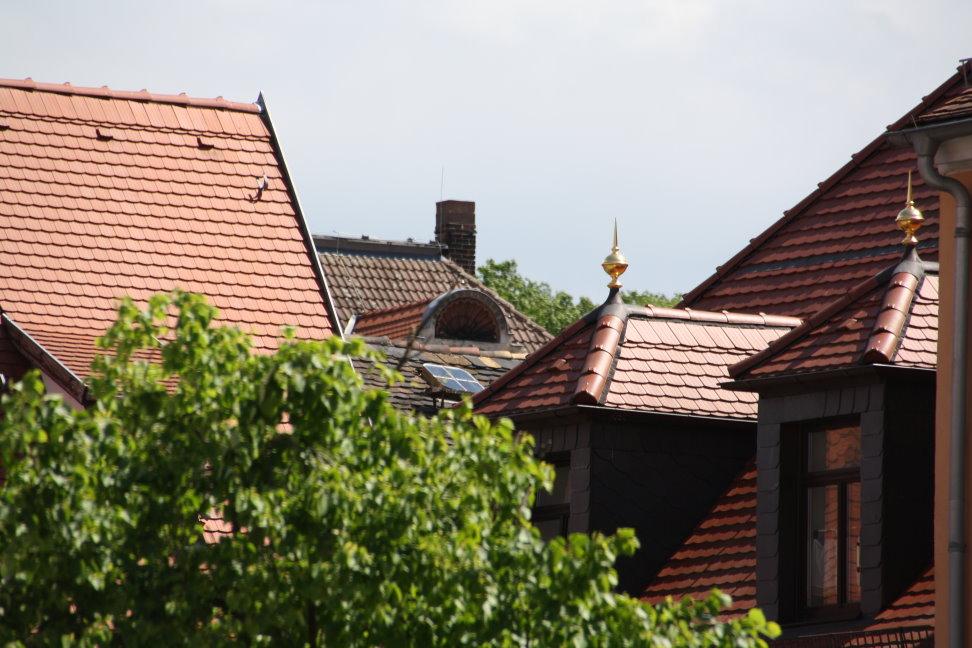 Dächer von Grimma (c) Foto von Susanne Haun