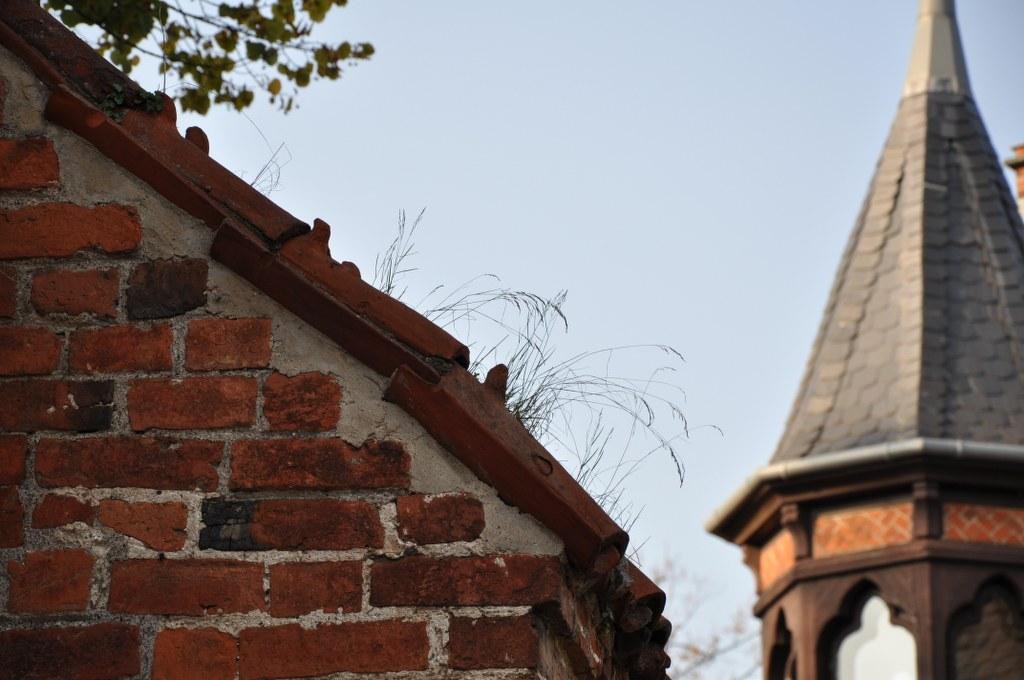 Dächer am Bad Doberaner Münster (c) Foto von M.Fanke