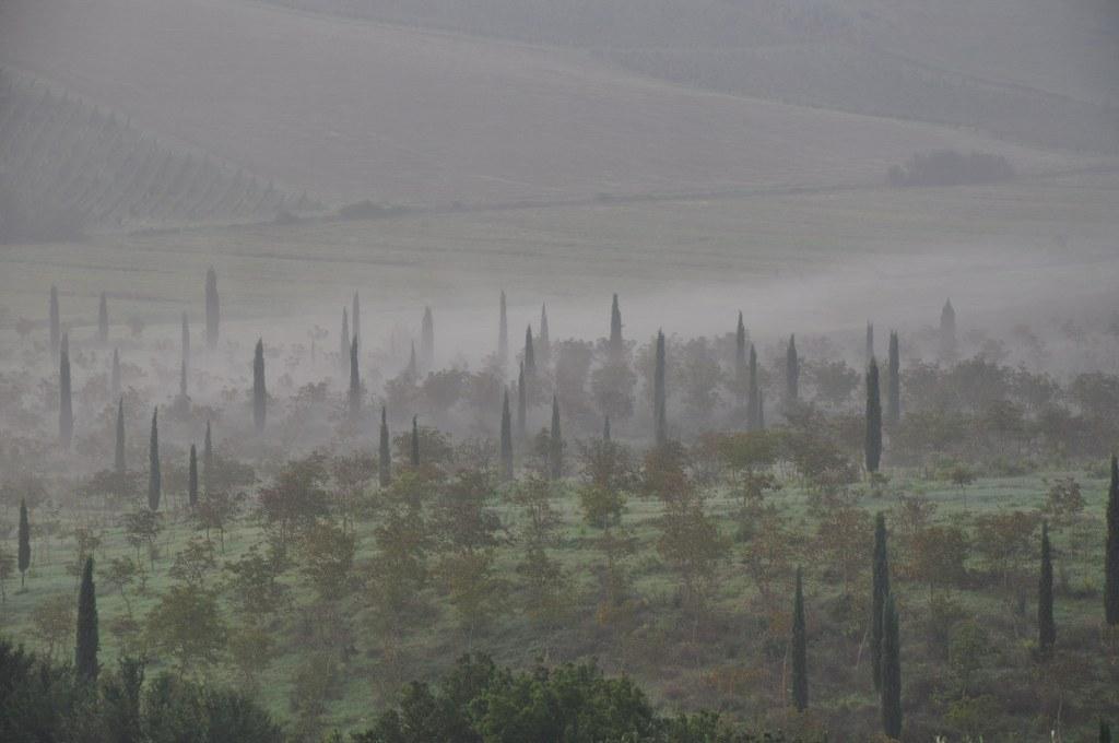 Morgennebel geesehen von der Fattoria Luciano Mazzei aus (c) Foto von M.Fanke