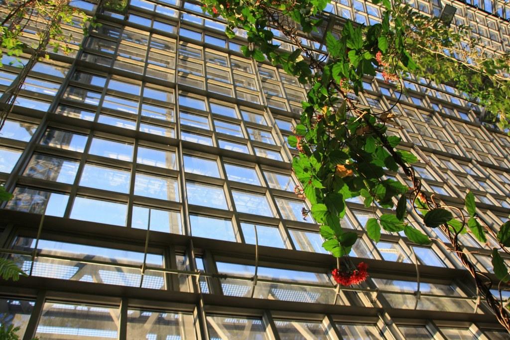 Gewächshaus im Botanischer Garten (c) Foto von Susanne Haun