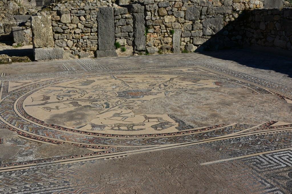 Mosaik in Volubilis (c) Foto von M.Fanke