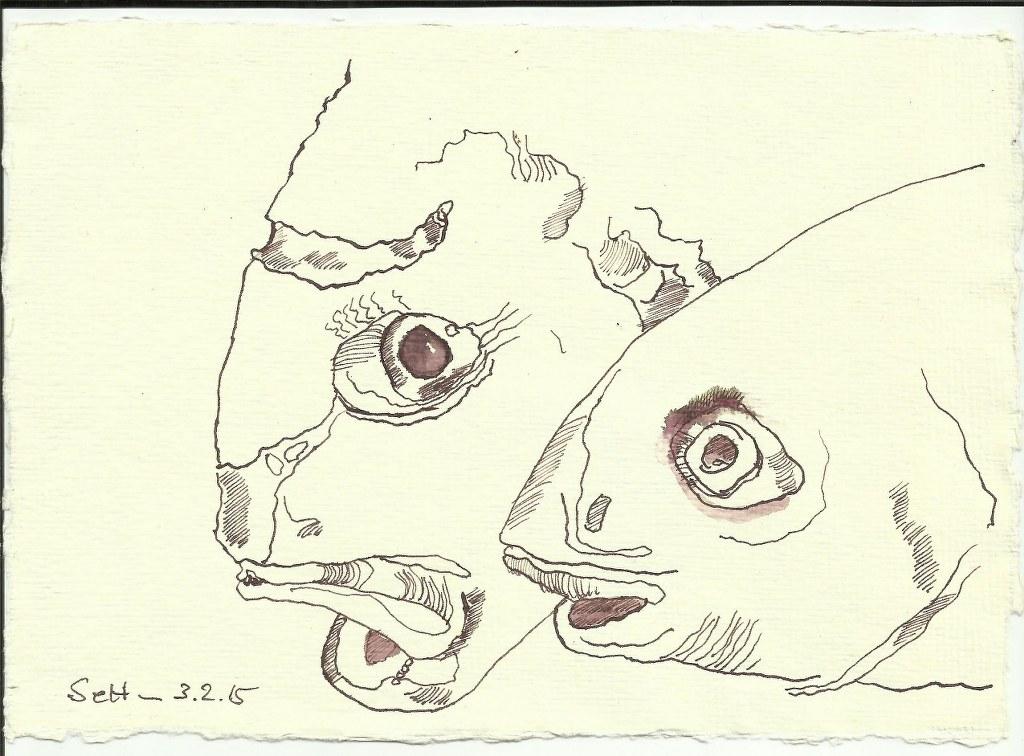 2 Fisch (c) Zeichnung von Susanne Haun
