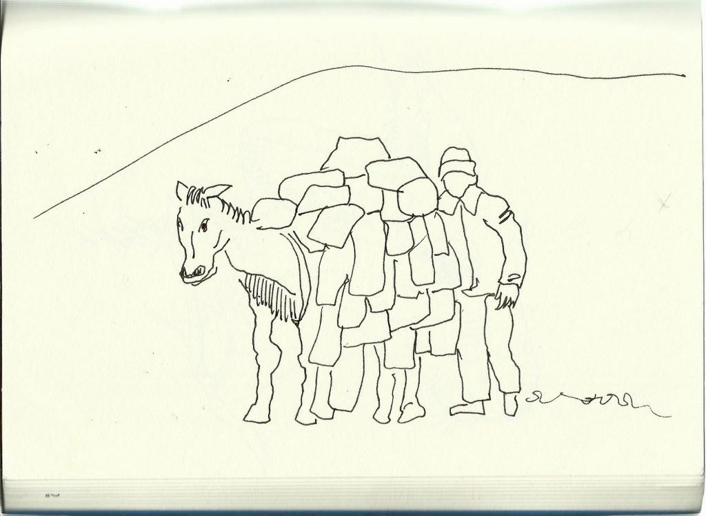 Packesel (c) Zeichnung von Susanne Haun