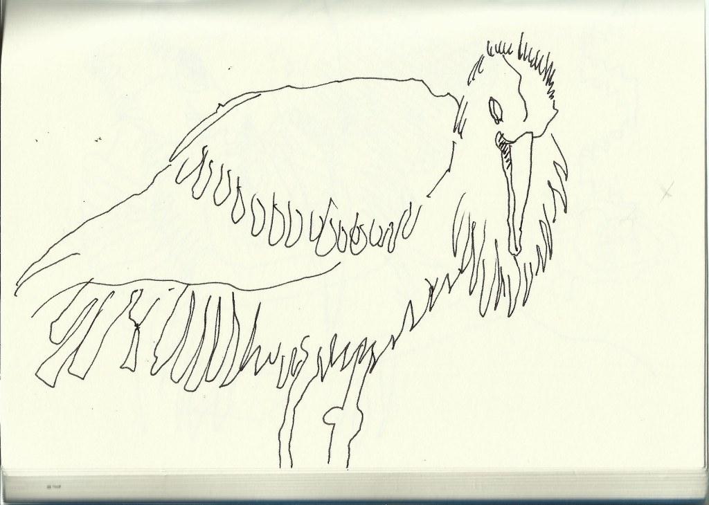 Storch (c) Zeichnung von Susanne Haun