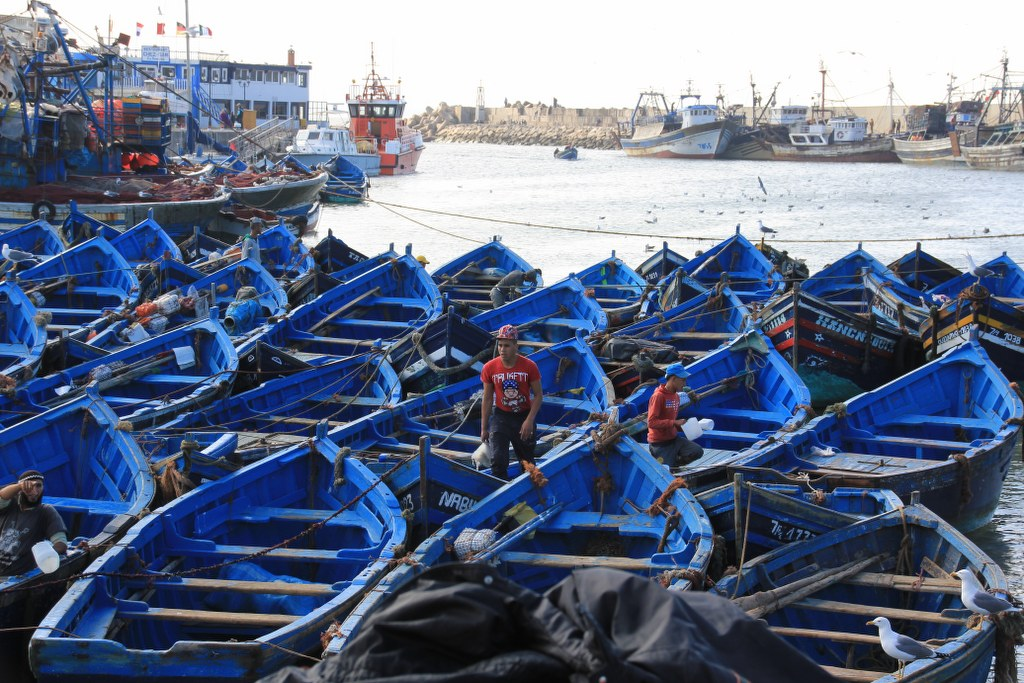 Hafen von Essaouira (c) Foto von Susanne Haun