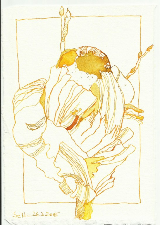 Gelbe Tulpe (c) Zeichnung von Susanne Haun 0003Gelbe Tulpe (c) Zeichnung von Susanne Haun 0003Gelbe Tulpe (c) Zeichnung von Susanne Haun 0003Gelbe Tulpe (c) Zeichnung von Susanne Haun 0003