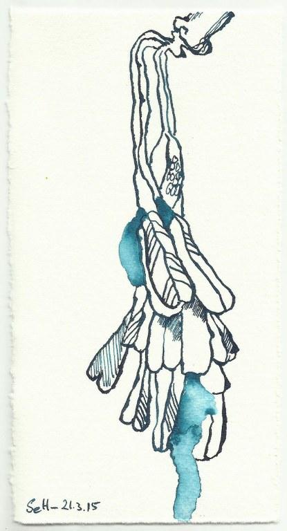Natur (c) Zeichnung von Susanne Haun 0001