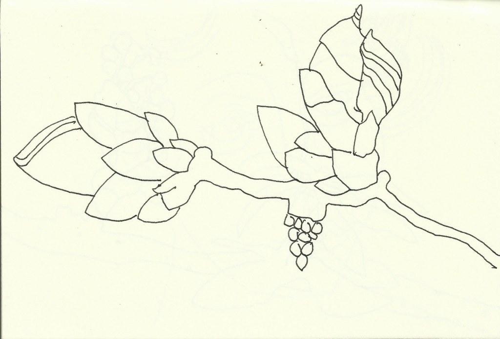 Frühling (c) Zeichnung von Susanne Haun