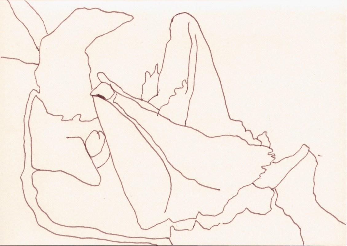 Eierkiste (c) Zeichnung von Susanne Haun