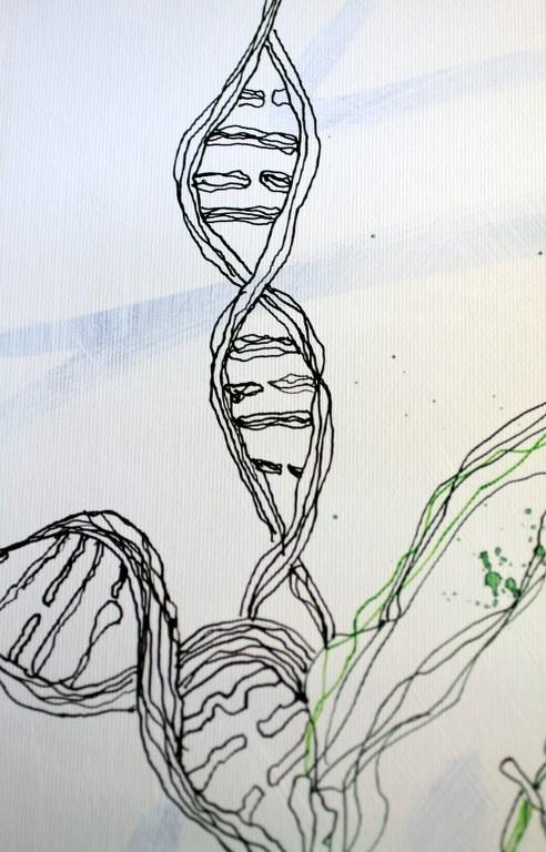DNA (c) Entstehung Zeichnung auf Leinwand von Susanne Haun