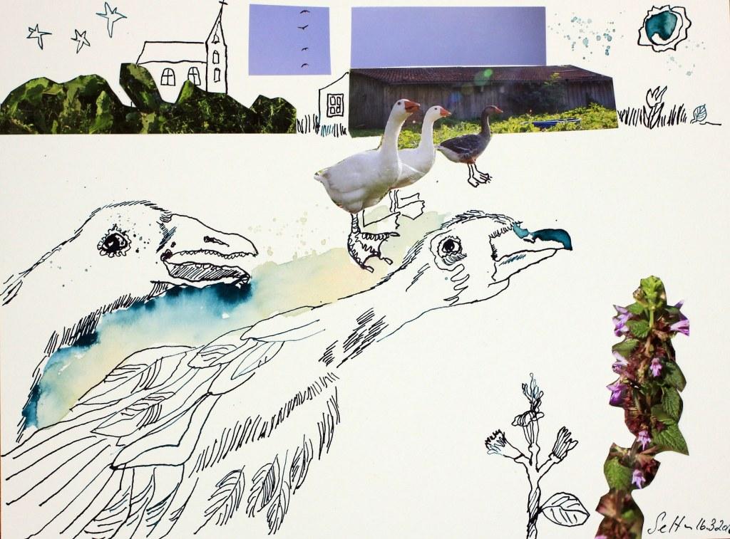 Sehgewohnheiten der Kleinsten – Gans (c) Collage von Susanne Haun