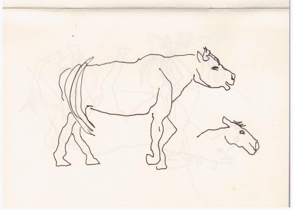 Wildpark Johannismühle (c) Zeichnung von Susanne Haun