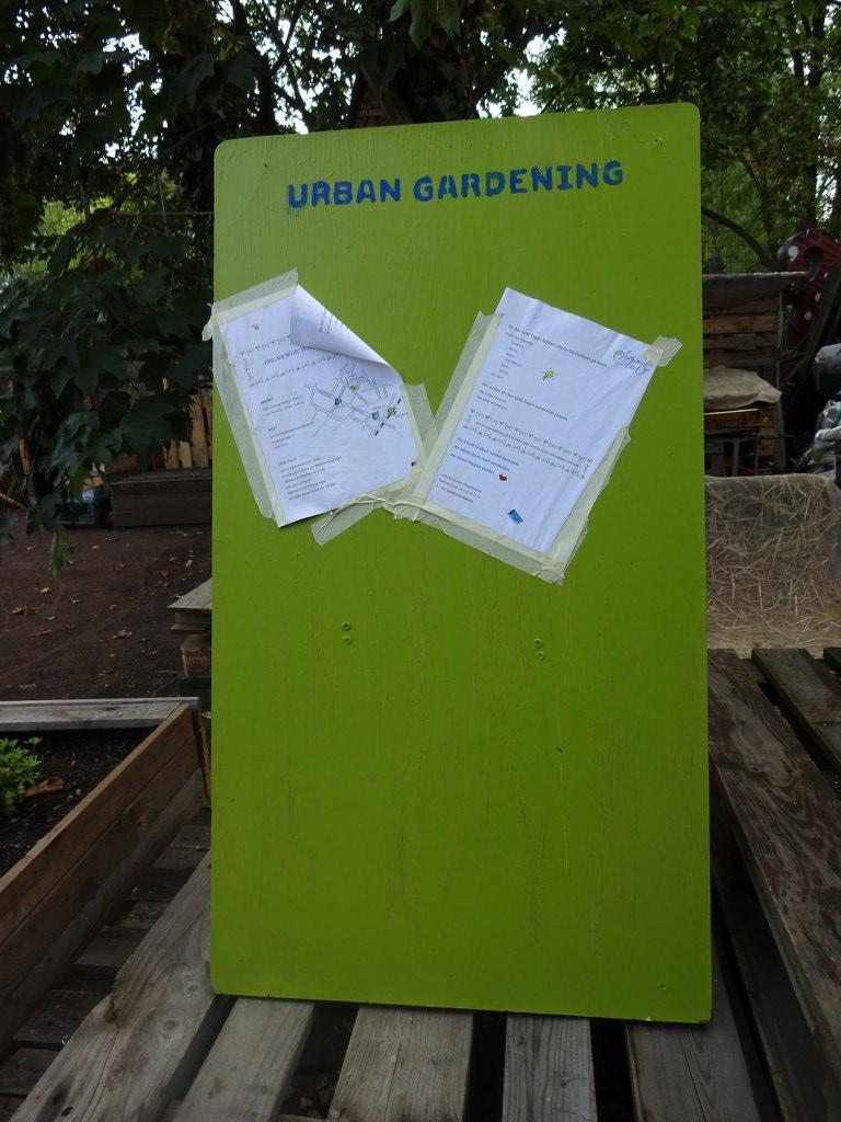 Es gibt nicht nur urban scetching sondern auch urban gardening (c) Foto von Susanne HaunEs gibt nicht nur urban scetching sondern auch urban gardening (c) Foto von Susanne Haun