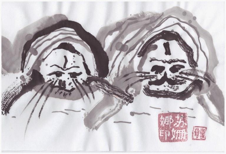 Seehund (c) Zeichnung von Susanne Haun