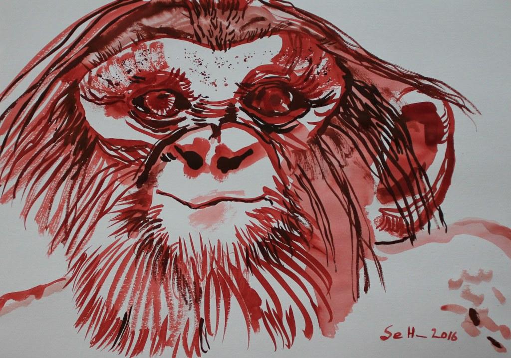 Feuer Affe - 70 x 50 cm - Tusche auf Bütten (c) Zeichnung von Susanne Haun