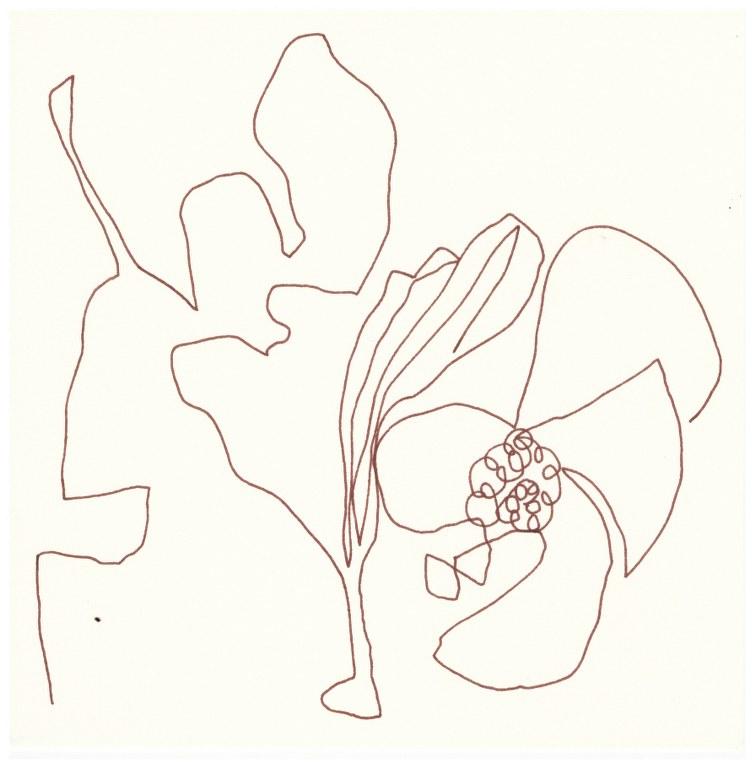 Raumformen (c) Zeichnung von Susanne Haun