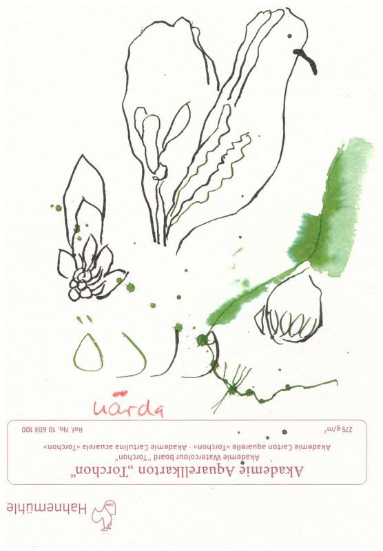 Arabisch Blume - Übungen mit Rima (c) Susanne Haun