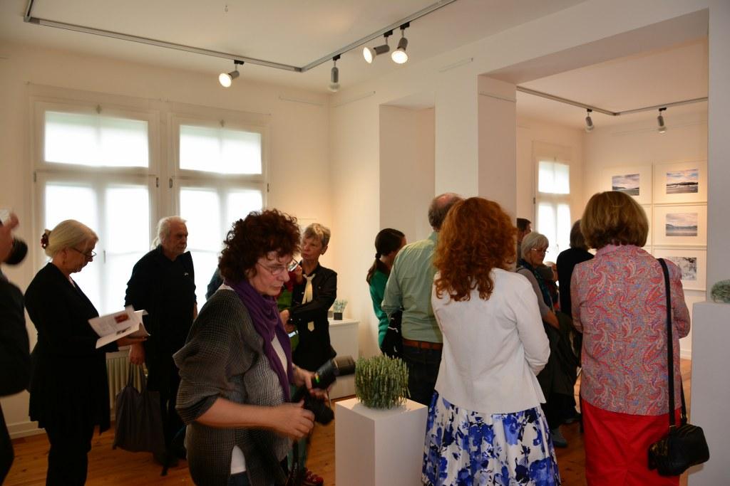 Ausstellungseröffnung Eiswelten Dirk Fiege Susanne Haun Roswitha Mecke Sabine Jacobs - Kulturbahnhof Nettersheim Evamaria Blaeser-Ridderbecks