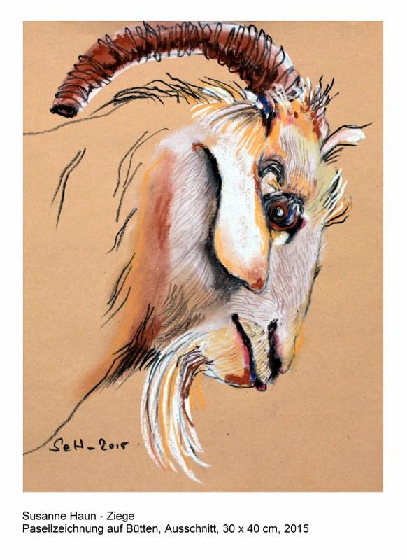 Postkarte Ziege (c) nach Pastellzeichnung von Susanne Haun