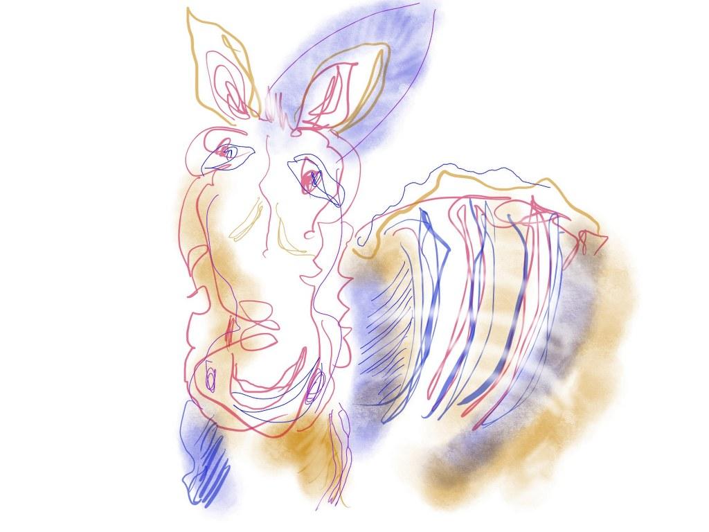 Zebra - Version 2 (c) Zeichnung auf iPad von Susanne Haun