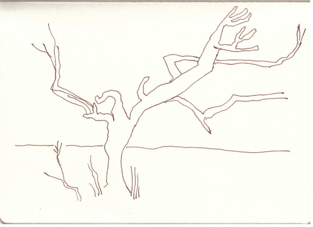 Um Spitzkoppe herum (c) Zeichnung von Susanne Haun