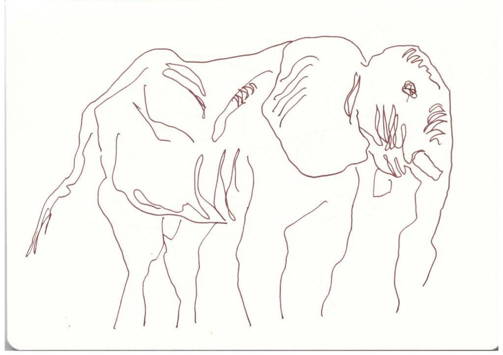 Elefanten (c) Zeichnung von Susanne Haun