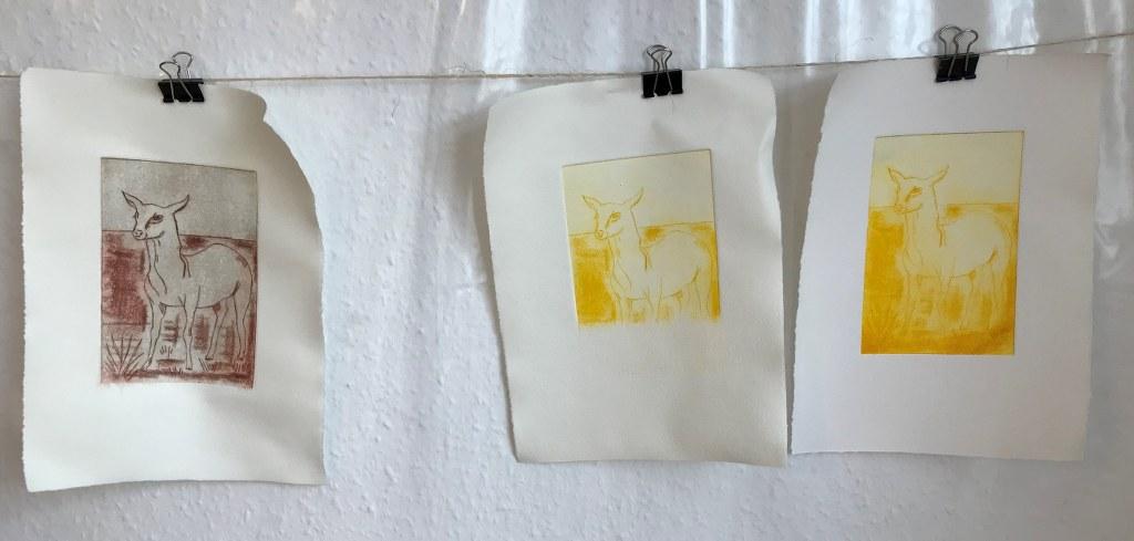 Alenas radierte Ergebnisse im Seminar Druckgraphik (c) Foto von Susanne Haun