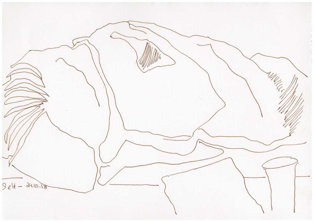 Obdachlos - Alles was ich habe Version 1 - Zeichnung von Susanne Haun - 20 x 30 cm (c) VG Bild Kunst, Bonn 2018