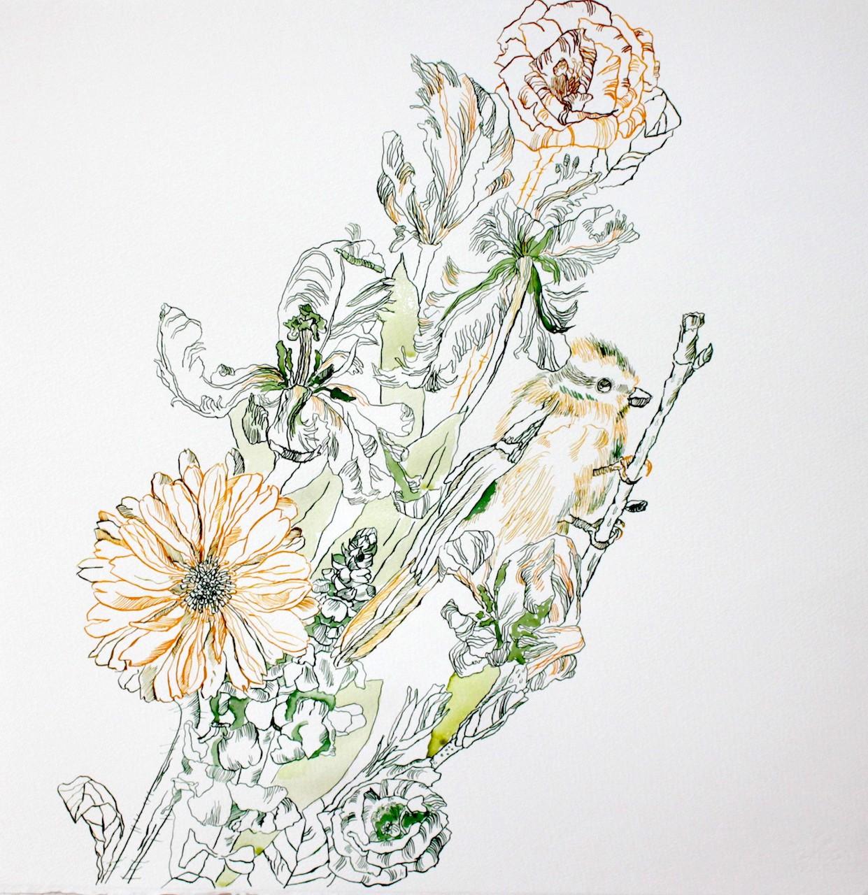 Paradiesvogel für Itha, 50 x 50 cm, Zeichnung von Susanne Haun (c) VG Bild-Kunst, Bonn 2019